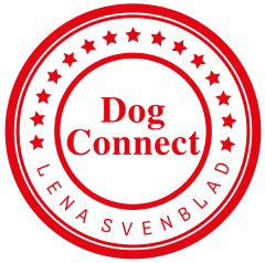 Dog Connect-2000